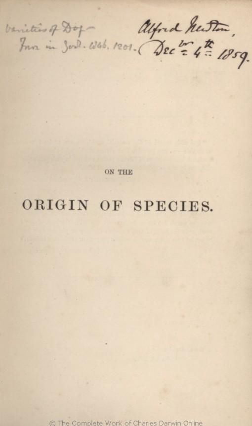 1859_Origin_F373_006